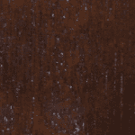 Kolor 7 dąb bagienny